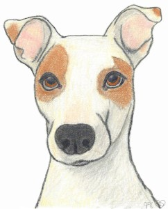"Profound Hounds series, ""Reo Understands,"" by Joey Jones, Ideajones"